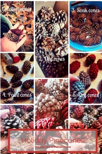5 steps to easy frosted pinecones. #DIY #pinecone #holiday
