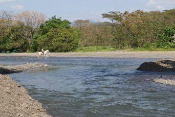 Explore the jungle with Sherry in Costa Rica #travel #costarica #jungle #tips #river