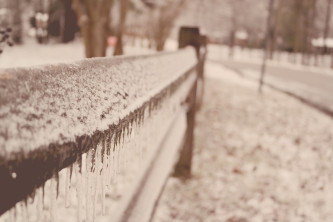 North Carolina Ice Storm shows a frozen wonder world.
