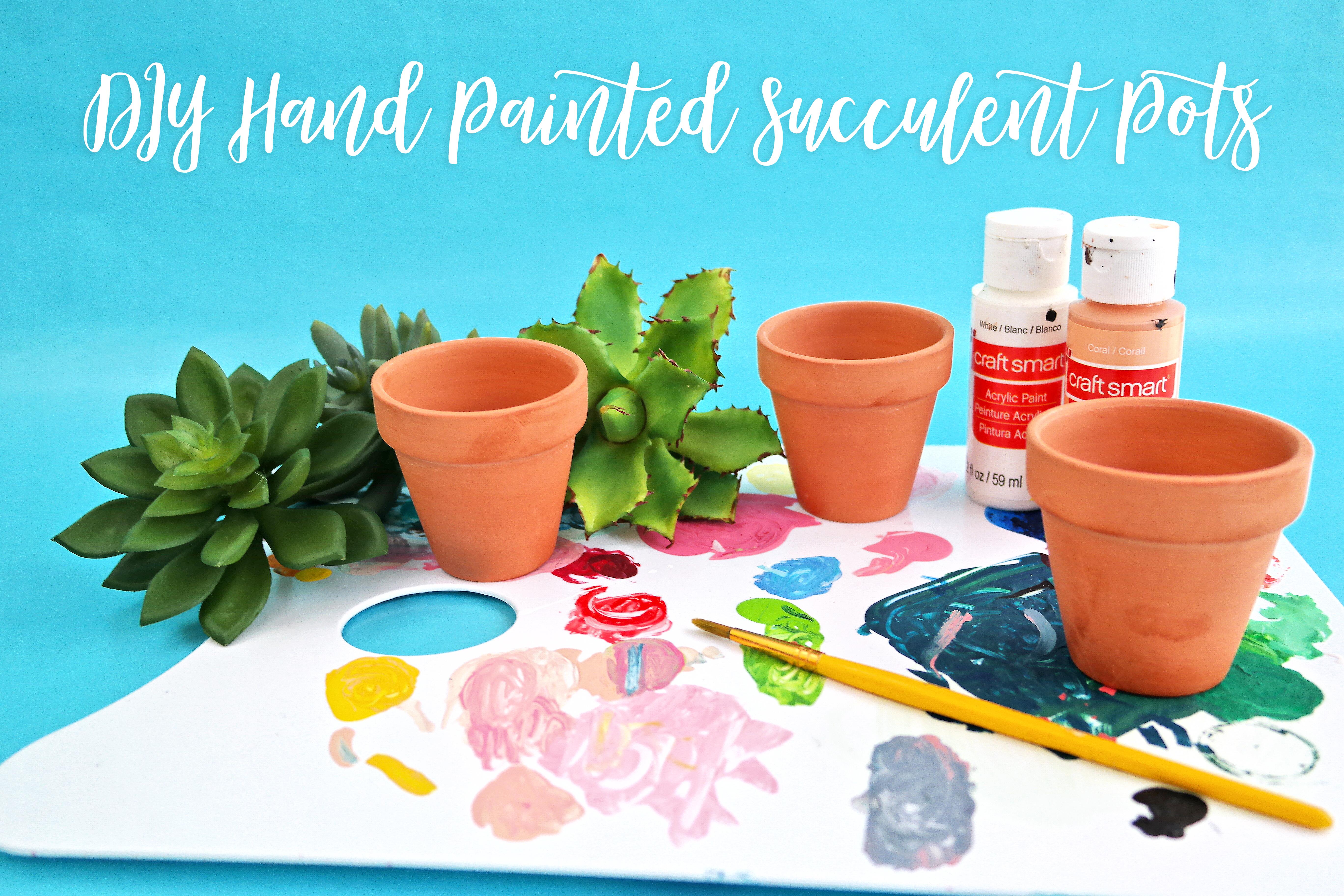 Diy Hand Painted Succulent Pots Quest Type