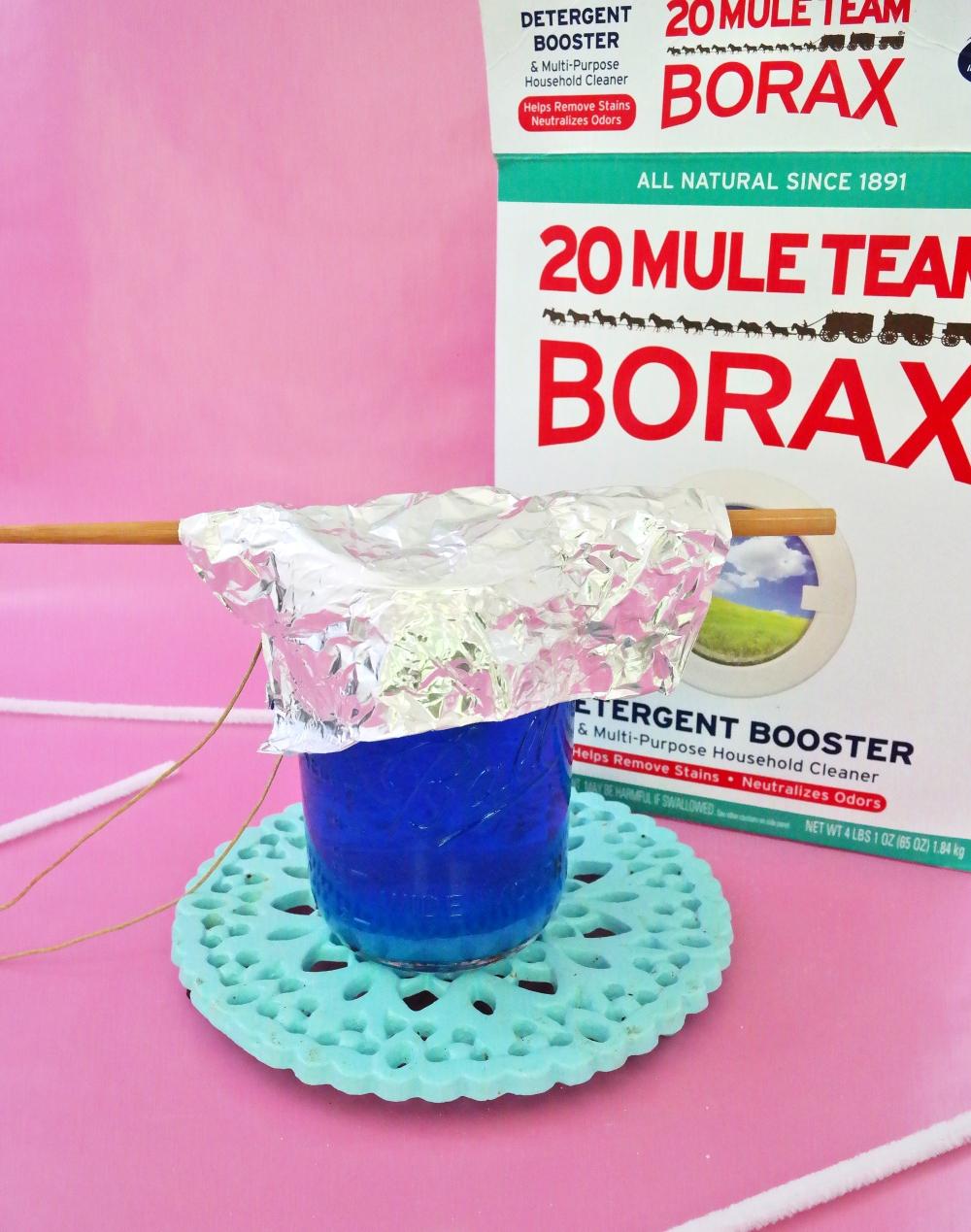 borax8.jpg