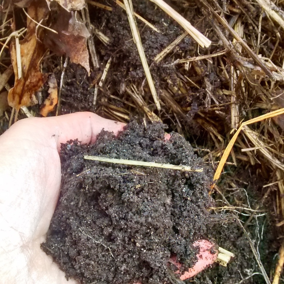 The soil quality is great